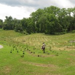 South Kent School Center for Innovation: Riparian Restoration & Permaculture Orchard