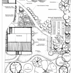 Edible landscape and forest garden, northeastern USA
