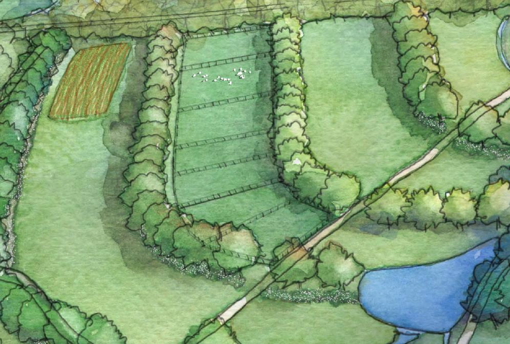 Permaculture Farm Design