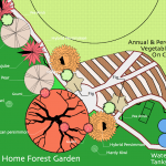 Home forest garden, Housatonic watershed, USA